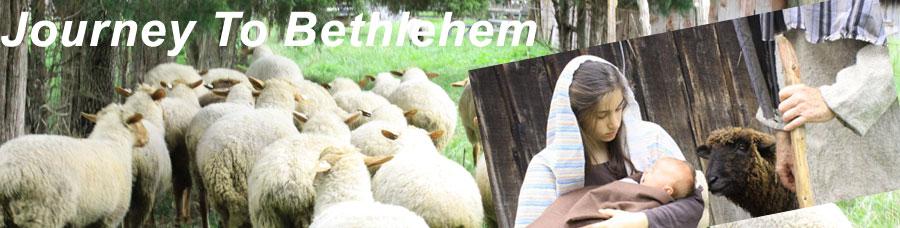 Journey to Bethlehem New Market